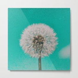 Green Blue Dandelion Metal Print