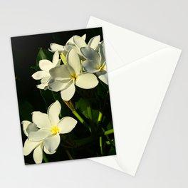 Glass House Plumeria Stationery Cards