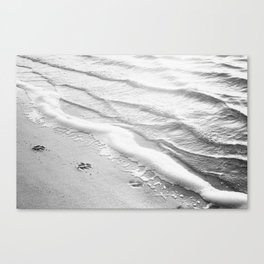 Black and White Beach Ocean Photography, Dog Paw Prints, Grey Water Ripples, Gray Sea Coastal Photo Canvas Print