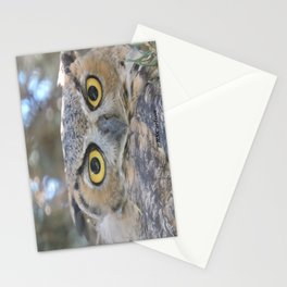 Young Owl at Noon Stationery Cards