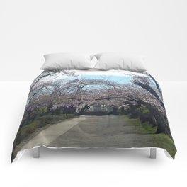Sakura Path Comforters