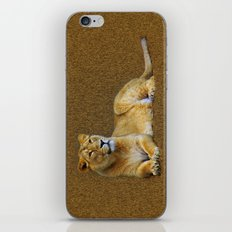 lioness iPhone & iPod Skin