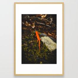 Neon Newt - Neon by Nature - @zekekitchen Framed Art Print