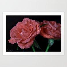 Pink Salmon Roses Art Print