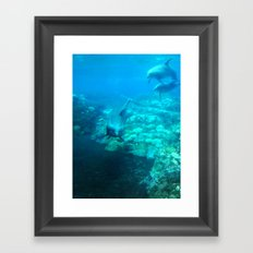 Under SeaWorld Framed Art Print