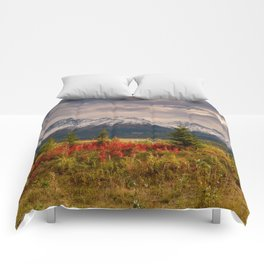 Seasons Turning Comforters