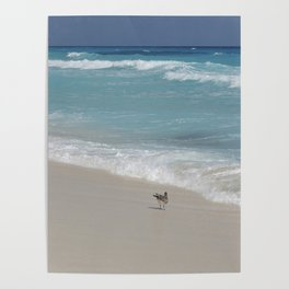 Carribean sea 8 Poster
