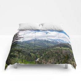Cashmere Comforters