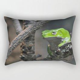Monkey Frog Rectangular Pillow