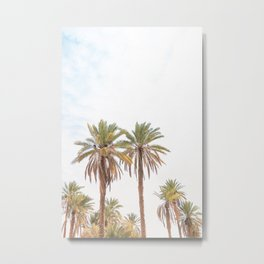 303. Two Summer Palm Trees, Jordanie Metal Print