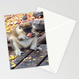 Green Monkey Munching Stationery Cards