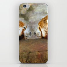 Nose to Nose iPhone & iPod Skin