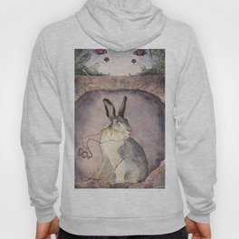 Down the Rabbit Hole Hoody