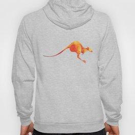 Kangaroo Hoody