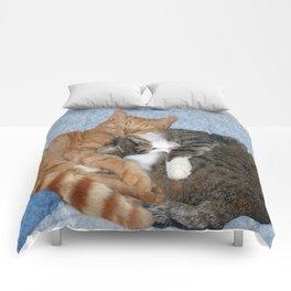 Sleeping Sweeties Comforters