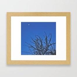 Moon over Blossoms Framed Art Print