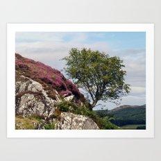 Dunadd Rowan Art Print
