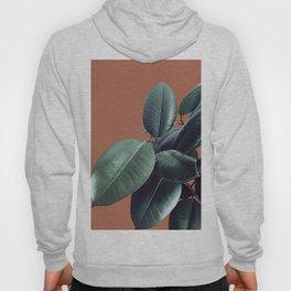 Ficus Elastica #17 #AutumnLeaf #foliage #decor #art #society6 Hoody