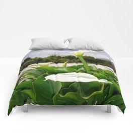 Three Cream Calla Lilies With Garden Background Comforters
