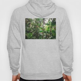 Tropical Forest Hoody