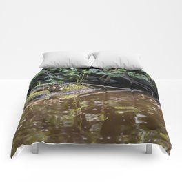 Eight Mallard ducklings Comforters