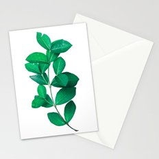 Green Leaves in White background Stationery Cards