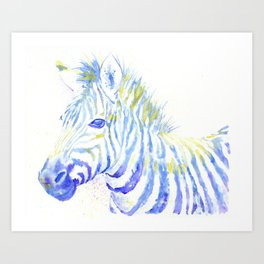 Quiet Zebra Art Print