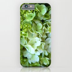 Green to white blooms iPhone 6s Slim Case