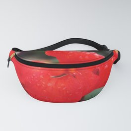 Walk Out the Door Fanny Pack