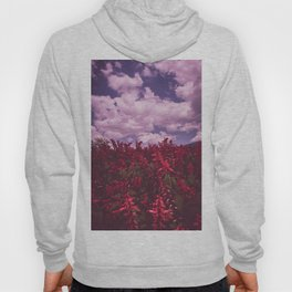Sea of Red Flowers against Cloudy Sky. Nature Photography. Hoody