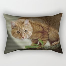 Cat out on a Limb Rectangular Pillow