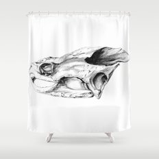 Snapping Turtle Skull Shower Curtain
