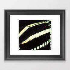BUTTERFLY13X Framed Art Print