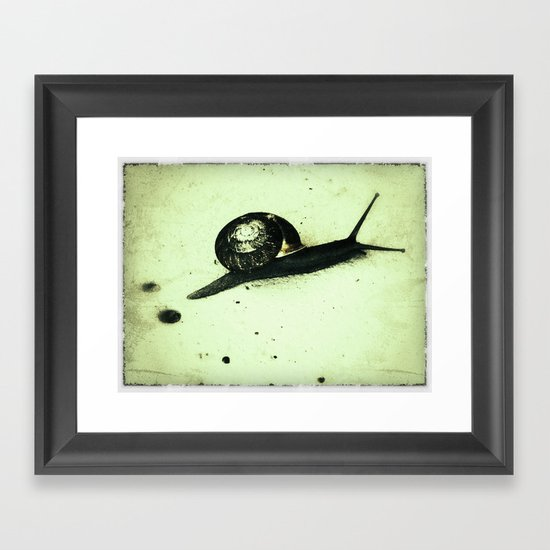 Snail Framed Art Print