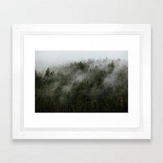 Pacific Northwest Foggy Forest Framed Art Print