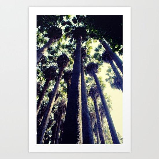 Palm Tree Art Print