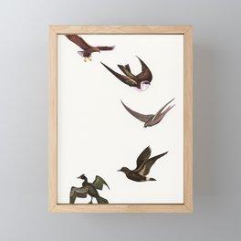 Holding Pattern Framed Mini Art Print