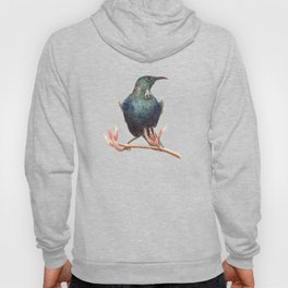 Tui - a native New Zealand bird 2013 Hoody