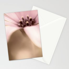 Pure Sweetness a single daisy Stationery Cards