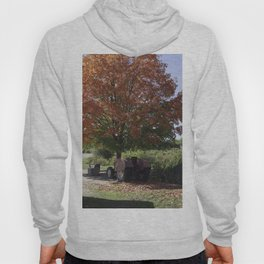 Fall time at the farm Hoody