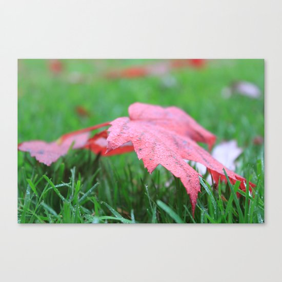 Dewy Leaves & Blades of Grass Canvas Print