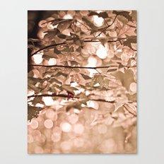 Dappled Sun Canvas Print