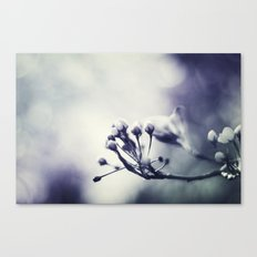 Spring in Black and White III Canvas Print