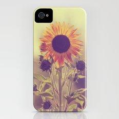Sunflower 01 iPhone (4, 4s) Slim Case