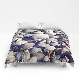 Cockle shells Comforters