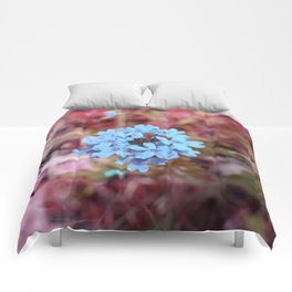 Blue Flowers, Red Thorns ~ Cedars of Lebanon, Tennessee Comforters