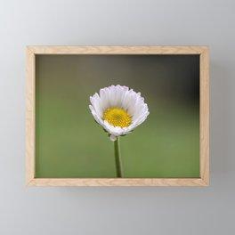 Spring dreams Framed Mini Art Print