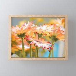 Gerbera mystery(2) Framed Mini Art Print