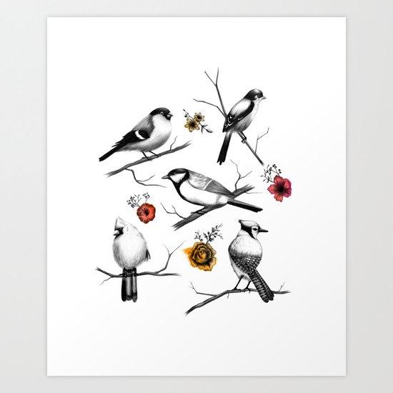 BIRDS & FLOWERS Art Print