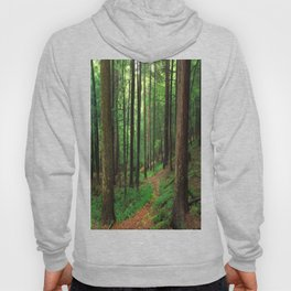 Forest 4 Hoody